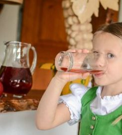Weingut und Steirisches Kürbiskernöl g.g.A. Fam. Norbert Brauchart